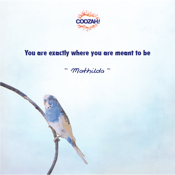 You are exactly where you are meant to be