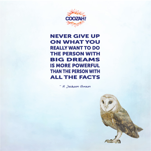 Never give up on what you really want to do the person with big dreams is more powerful than the person with all the facts